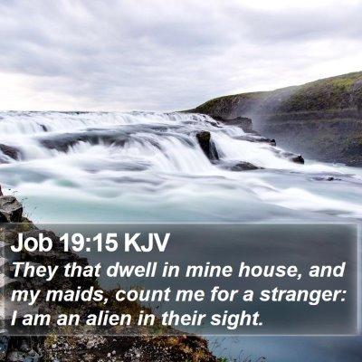 Job 19:15 KJV Bible Verse Image