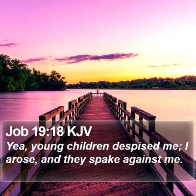 Job 19:18 KJV Bible Verse Image