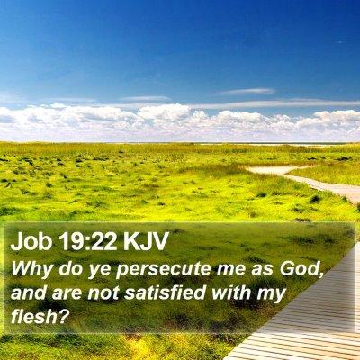 Job 19:22 KJV Bible Verse Image