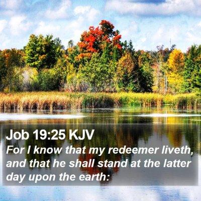 Job 19:25 KJV Bible Verse Image