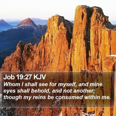 Job 19:27 KJV Bible Verse Image