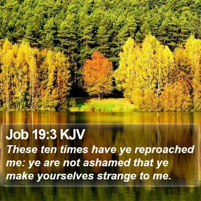 Job 19:3 KJV Bible Verse Image