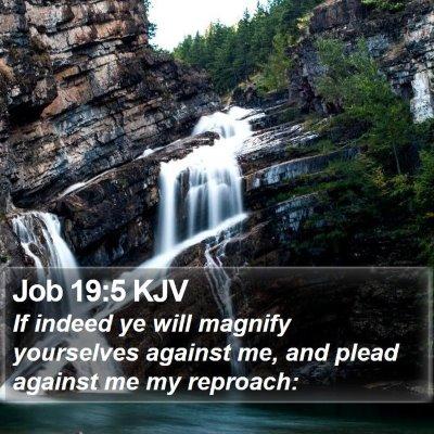 Job 19:5 KJV Bible Verse Image