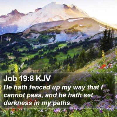 Job 19:8 KJV Bible Verse Image