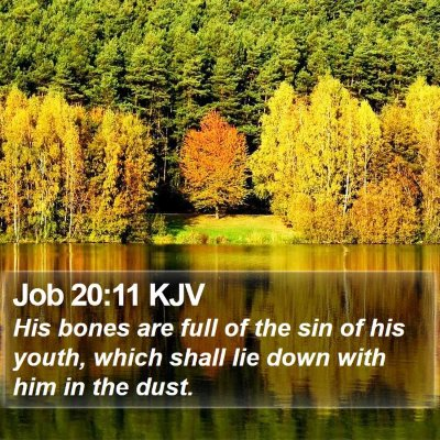 Job 20:11 KJV Bible Verse Image
