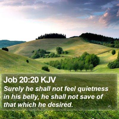 Job 20:20 KJV Bible Verse Image