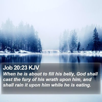 Job 20:23 KJV Bible Verse Image