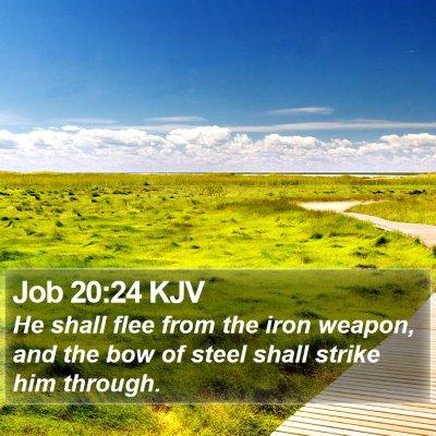 Job 20:24 KJV Bible Verse Image