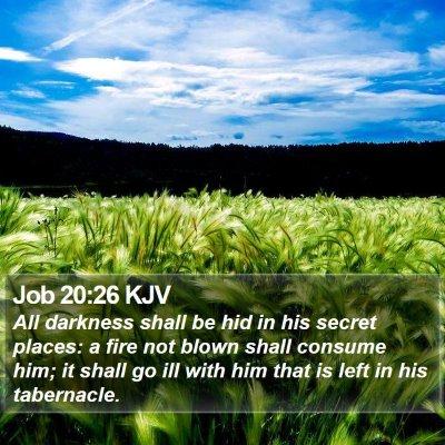 Job 20:26 KJV Bible Verse Image