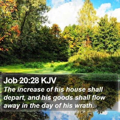 Job 20:28 KJV Bible Verse Image
