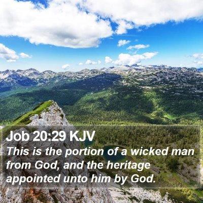 Job 20:29 KJV Bible Verse Image