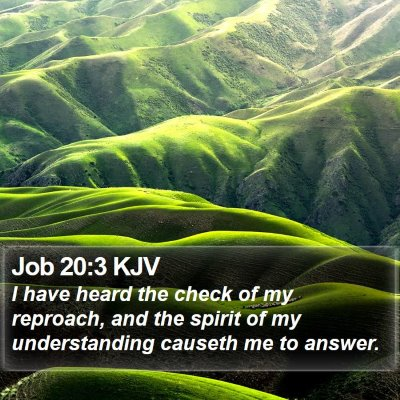 Job 20:3 KJV Bible Verse Image