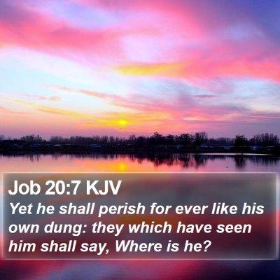 Job 20:7 KJV Bible Verse Image