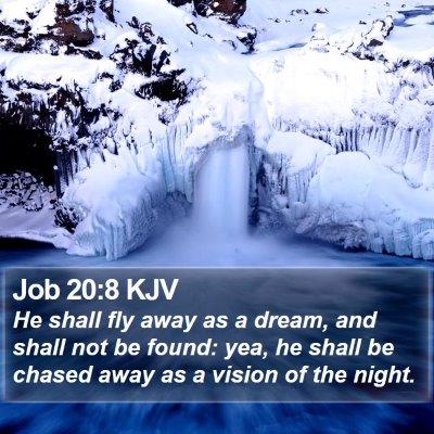 Job 20:8 KJV Bible Verse Image