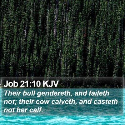 Job 21:10 KJV Bible Verse Image