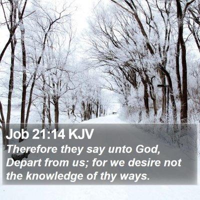 Job 21:14 KJV Bible Verse Image