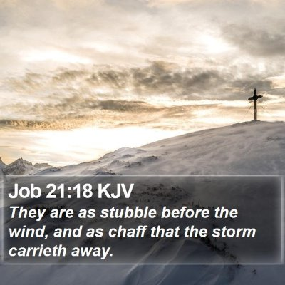 Job 21:18 KJV Bible Verse Image