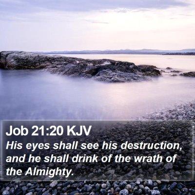 Job 21:20 KJV Bible Verse Image