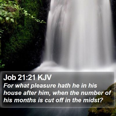 Job 21:21 KJV Bible Verse Image