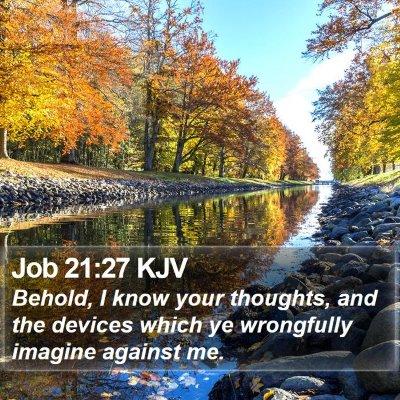 Job 21:27 KJV Bible Verse Image