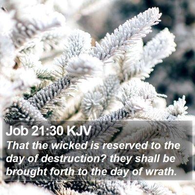 Job 21:30 KJV Bible Verse Image