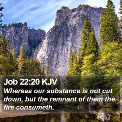 Job 22:20 KJV Bible Verse Image