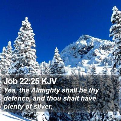 Job 22:25 KJV Bible Verse Image