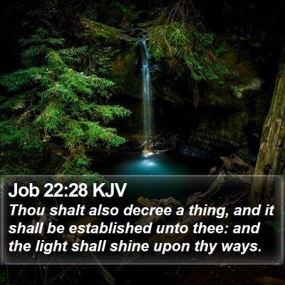 Job 22:28 KJV Bible Verse Image