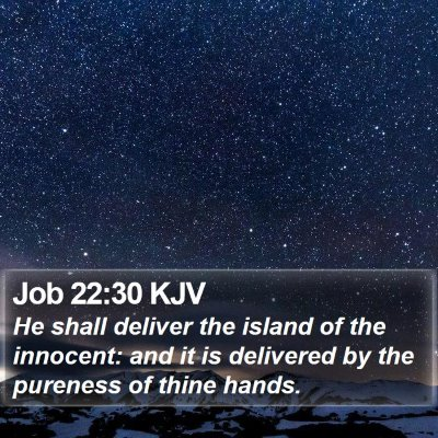 Job 22:30 KJV Bible Verse Image