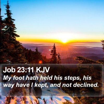 Job 23:11 KJV Bible Verse Image