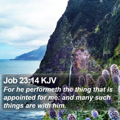 Job 23:14 KJV Bible Verse Image