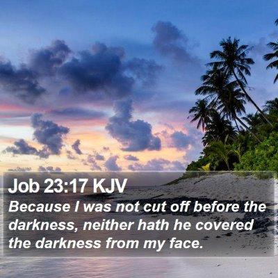Job 23:17 KJV Bible Verse Image