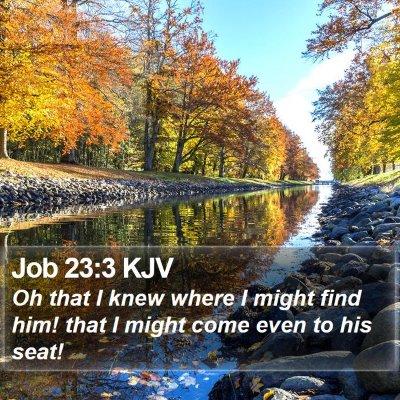 Job 23:3 KJV Bible Verse Image