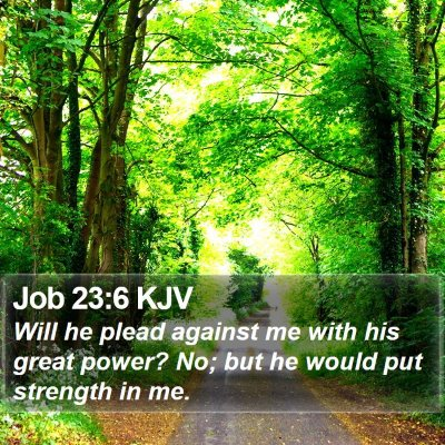 Job 23:6 KJV Bible Verse Image