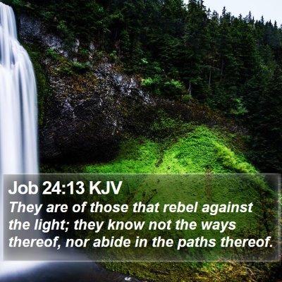 Job 24:13 KJV Bible Verse Image