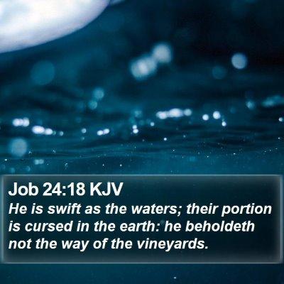 Job 24:18 KJV Bible Verse Image