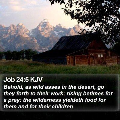 Job 24:5 KJV Bible Verse Image