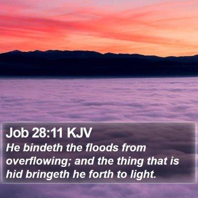 Job 28:11 KJV Bible Verse Image
