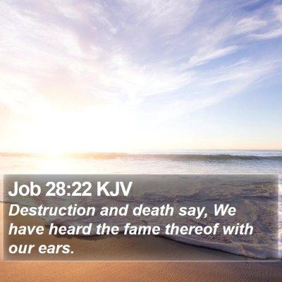 Job 28:22 KJV Bible Verse Image