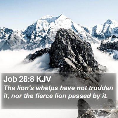 Job 28:8 KJV Bible Verse Image