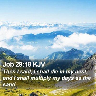 Job 29:18 KJV Bible Verse Image