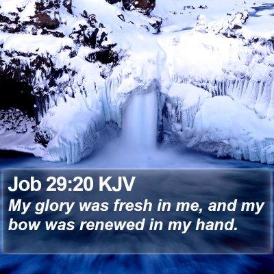 Job 29:20 KJV Bible Verse Image