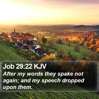 Job 29:22 KJV Bible Verse Image