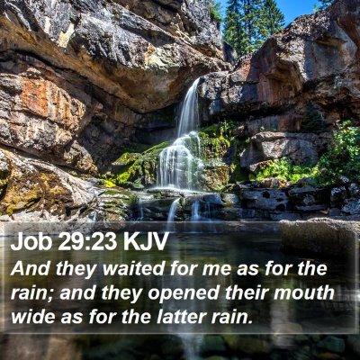 Job 29:23 KJV Bible Verse Image