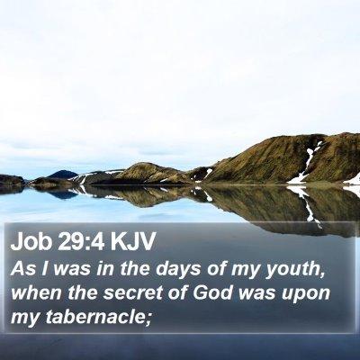 Job 29:4 KJV Bible Verse Image