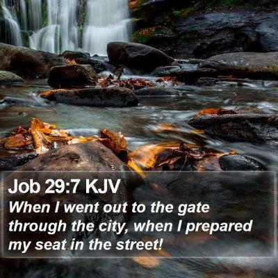 Job 29:7 KJV Bible Verse Image