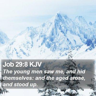 Job 29:8 KJV Bible Verse Image