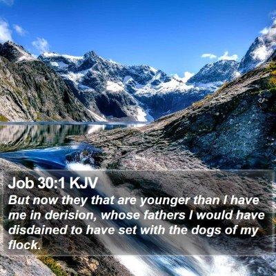 Job 30:1 KJV Bible Verse Image