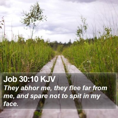 Job 30:10 KJV Bible Verse Image