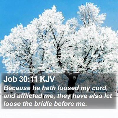 Job 30:11 KJV Bible Verse Image
